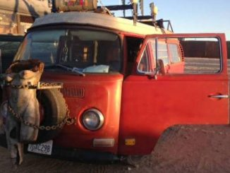 VW Bus For Sale in San Diego: Westfalia Camper Van & Conversions